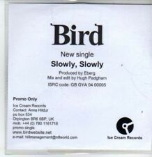 (BT501) Bird, Slowly, Slowly  - DJ CD