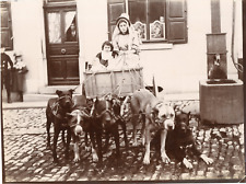 Belgique, jeunes laitières, vers 1890 Vintage silver print Tirage argentique