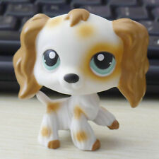 LPS  Jade Green eyes Cocker Dog 2 inch  FIGURE #344 LITTLEST PET SHOP