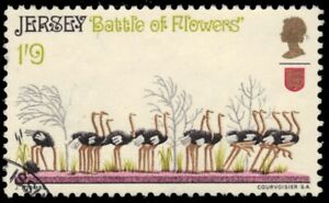 "JERSEY 33 - Battle of the Flowers Parade ""Ostriches"" (pb24286)"