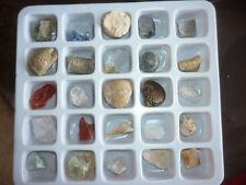 SET COLLEZIONE FOSSILI MINERALI dente squalo nautiloide ammonite cristallo geode