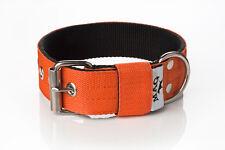 4cm Strong Nylon Dog Collar (english, staffordshire bull terrier, pitbull, etc.)