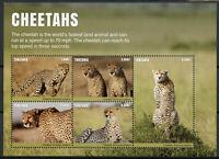Tanzania Wild Animals Stamps 2017 MNH Cheetahs Cheetah Big Cats Fauna 5v M/S II