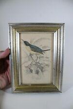 LR Antique Audubon Bird English Color Engraving Plate 18 Flycatcher