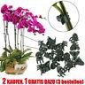 50/100x Orchideen Clip Klammern Orchideenclip Orchideenklammern Pflanzenclips
