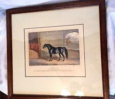 Original 1860 E. Corbet Colored Engraving of Horse Gifted by Queen Victoria EUC