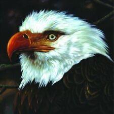 Mogwai - Hawk Is Howling vinyl LP NEW/SEALED