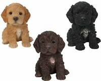 Cockapoo Puppy Dog Lifelike Ornament Gift Indoor Outdoor Pet Pals 3 Colours NEW