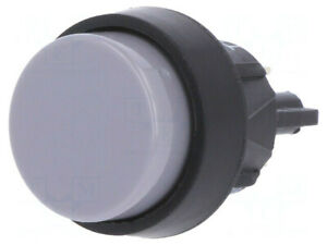 5000.0101 Schalter: Druckknopf; Pos: 2; Spst-No; 2A/250VAC; 4A/250VAC; IP40
