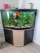 Eck Aquarium 350l Von Fluval