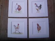 """Watercolour chickens,  Prints  x 4, in  8""""x 8"""" mounts"""