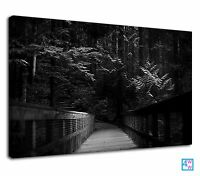 Amazing Rope Bridge In Dark Black And White Nature Canvas Print Wall Art Picture