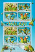 BIRD0057 - BIRDS MALAWI  2009 LILIAN'S LOVEBIRD WWF SHEET  MNH