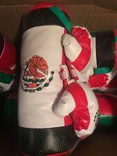 New Kids Mexico Boxing Kit Training Bag Set Punching Bag Gloves Free Shipping