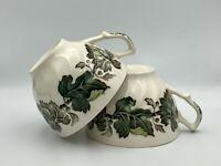 Set of 2 Vintage Johnson Brothers Porcelain Teacups Made in England