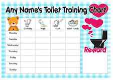 A4 Personalised Toilet Training Chart - Blue Gingham Design - Pen & 2 x Sticker