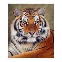 Animal Tiger 5D Diamond Painting Embroidery Cross Stitch Kit Home Decor Craft