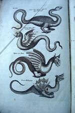 JONSTONUS Histoire naturelle SERPENTIBUS  1665 avec 12 planches SERPENT DRAGON