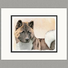 Akita Dog Original Art Print 8x10 Matted to 11x14