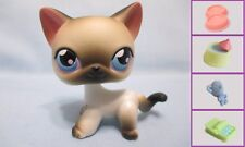 Littlest Pet shop #5 Black White Siamese Kitty Cat +1 FREE Accessory Authentic