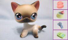 Littlest Pet shop #5 Black White Siamese Kitty Cat +1 FREE Accessory 100% Authen