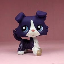 Littlest Pet Shop Puppy Purple Collie Dog Blue Eyes Animal Figures LPS #1676 Toy