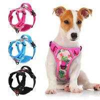 Reflektierend Hundegeschirr Gepolstert Haustier Brustgeschirr Powergeschirr S-XL