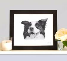 BORDER COLLIE Working Sheepdog Art Print Drawing Picture MOUNTED Present Gift