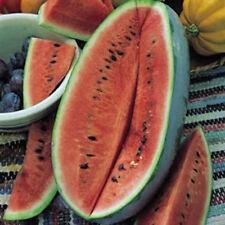 Kings Seeds-Sandía Charleston Gris - 15 semillas
