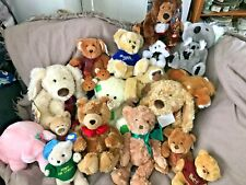 Teddy Bears - Various - All in Beautiful Condition