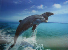 3D Lenticular Poster - Dolphins Jumping in Water - 10x14 Print - Marine Animals