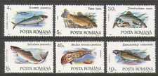 Romania 1992 Tench/Perch/Mullet/Fish/Marine/Nature/Fishing 6v set (n20791)