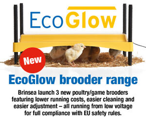 EXCLUSIVE! Brinsea EcoGlow 1200 Chick Brooder (Poultry) (WITH FREE COVER)