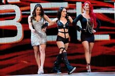 The Bella Twins and Eva Marie 4x6 WWE Divas Ring Entrance Photo 01