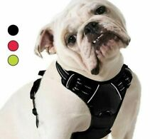 Pet Harness Puppy Dog Adjustable Nylon Cat Harness For Large Medium Dog Vest