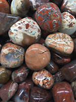 ONE (1) GENUINE BRECCIATED JASPER TUMBLED STONE - FREE AU POSTAGE