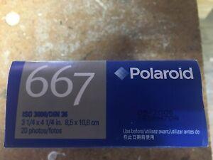 Polaroid 667 ISO 3000, 20-Fotos