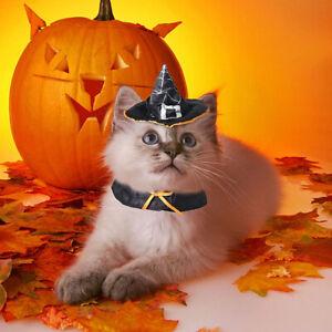 Halloween Pet Cat Costumes Wizard Set Suit Transfiguration Hat Bib Holiday