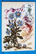FLEURS DE MONTAGNE   FRANCE    CPA Carte Postale Maximum  Yt 2268 C