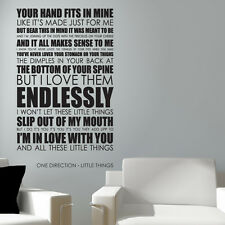 One Direction wall art sticker Little Things Lyrics decal music quote l33