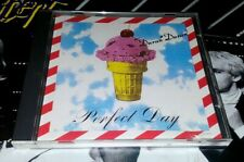 DURAN DURAN Perfect Day USA 2 Track Promo Only CD .
