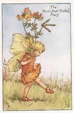 Flower Fairies: The Bird's Foot Trefoil Fairy Vintage Print c1930 by Cicely Mary