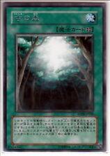 Yu-Gi-Oh Ancient Forest ANPR-JP048 Rare Mint