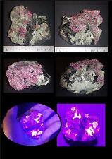 Eudialyte brut fluorescente 131 g Péninsule de Kola - Russie - Rare minéral