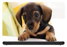 15.6 inch Cute Puppy-Laptop Vinyl Skin/Decal/Sticker/Cover -Somestuff247-LC027