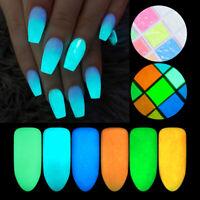 10g Ultrafine Luminous Nagel Pulver Pigment Dust Glow in the Dark Nail Art Dekor