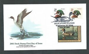 2001 RW68 Balke PINTAIL DUCK FLEETWOOD FDC First Day