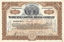 TUOLUMNE Copper Mining Compagny Certificate 100 Shares Arizona 1920