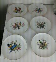 "Set of 6 J K W Bavaria Porcelain Bird Theme Gold Rim 7 3/4"" Plates West Germany"