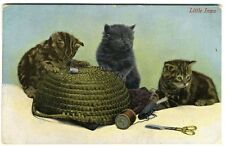 KITTENS Playing with SEWING BASKET Postcard c 1912 Tabby and Black Cats